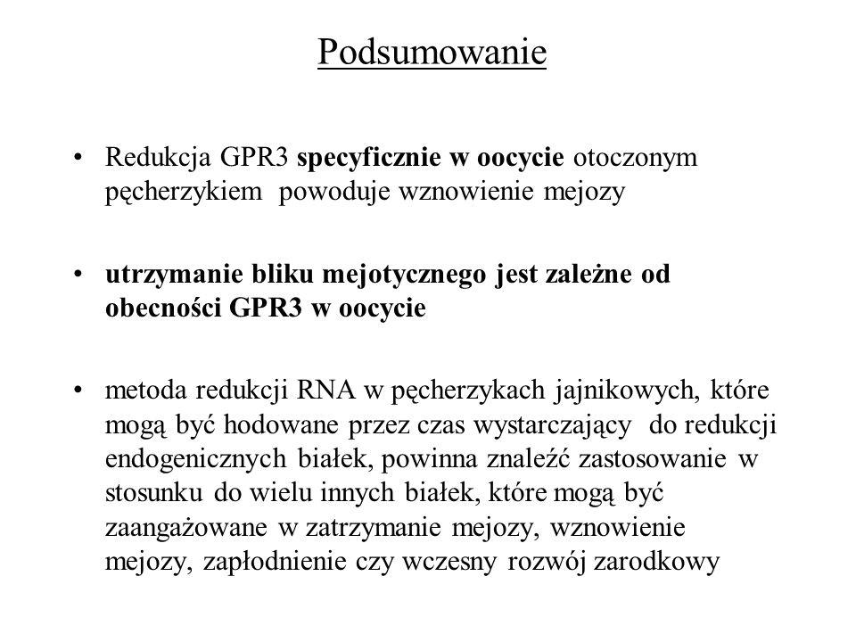 PodsumowanieRedukcja GPR3 specyficznie w oocycie otoczonym pęcherzykiem powoduje wznowienie mejozy.