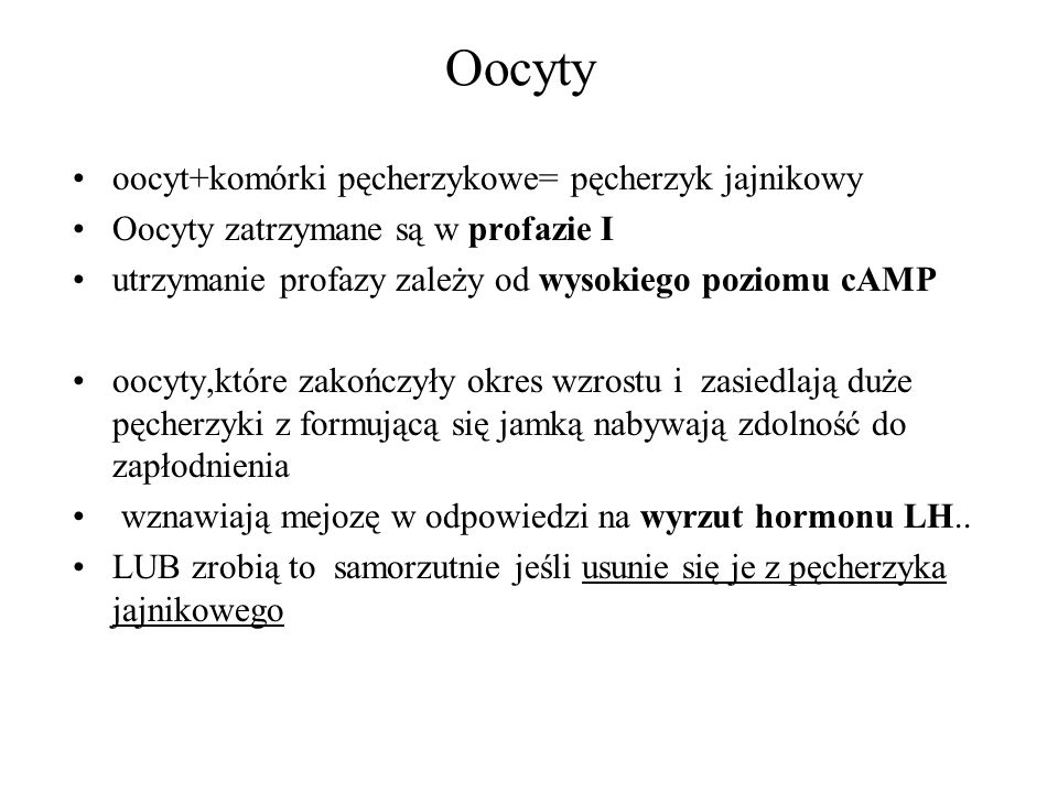 Oocyty oocyt+komórki pęcherzykowe= pęcherzyk jajnikowy