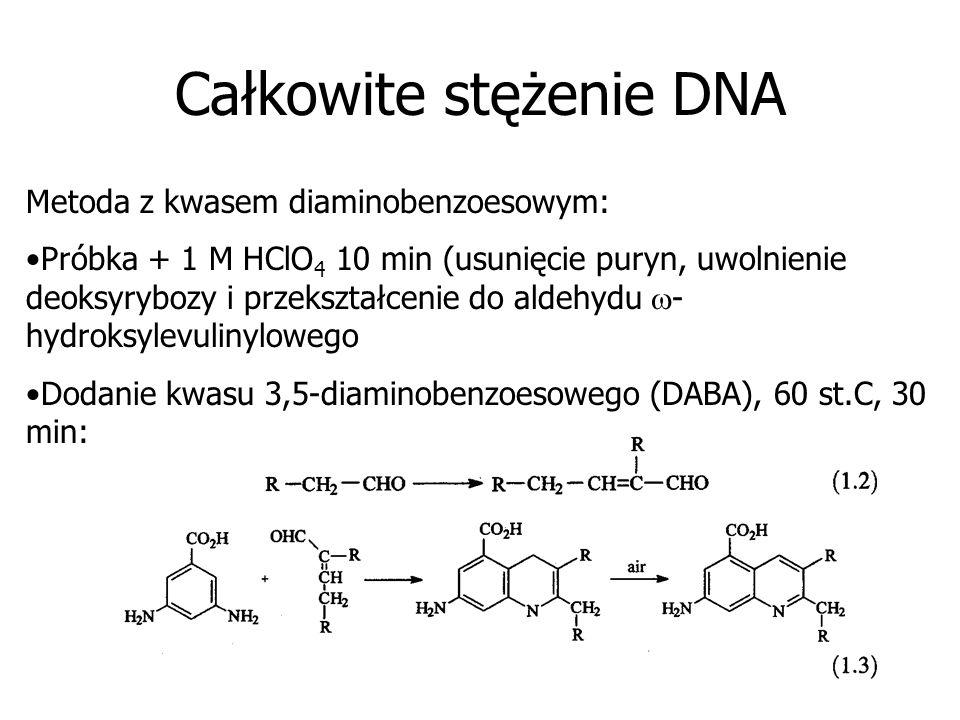 Całkowite stężenie DNA