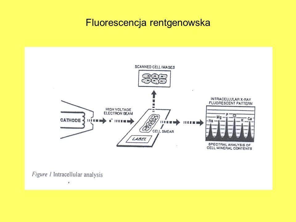 Fluorescencja rentgenowska
