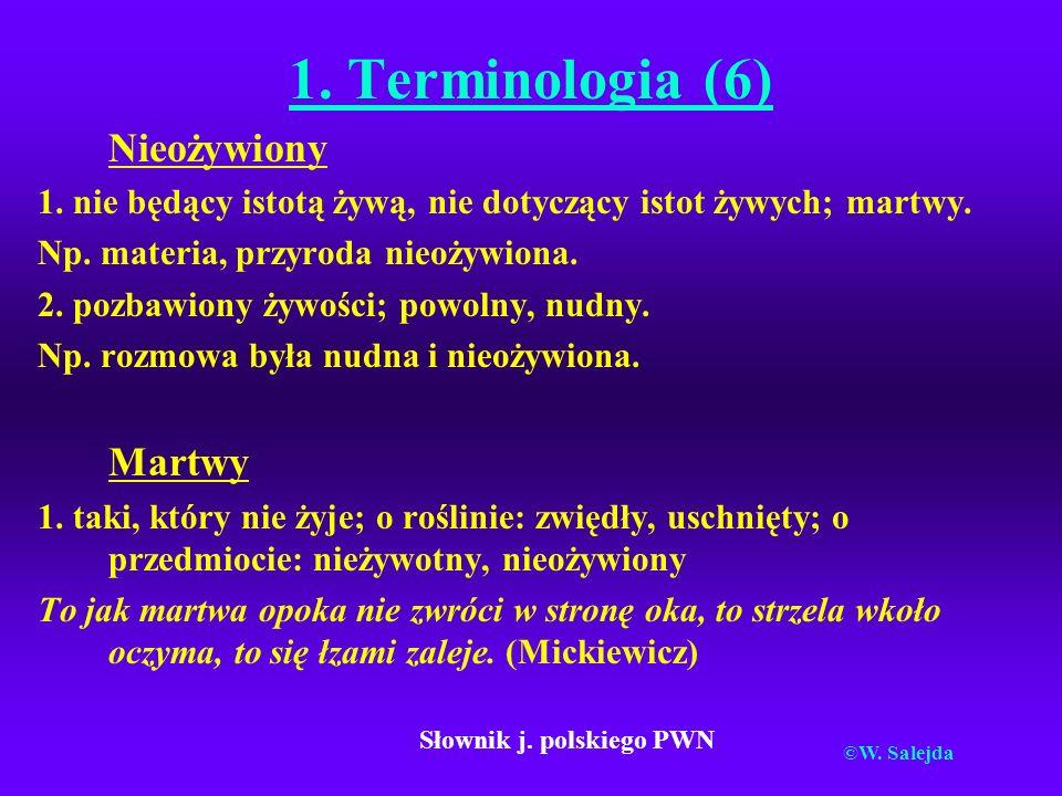 Słownik j. polskiego PWN