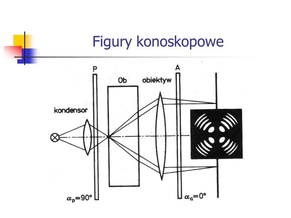 Figury konoskopowe