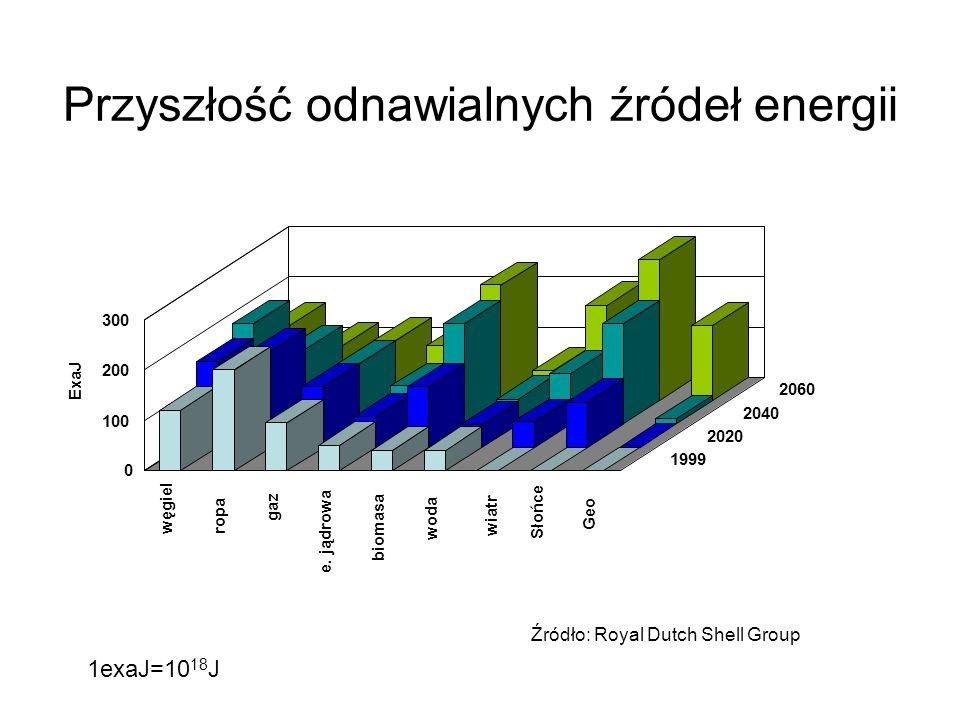 Przyszłość odnawialnych źródeł energii