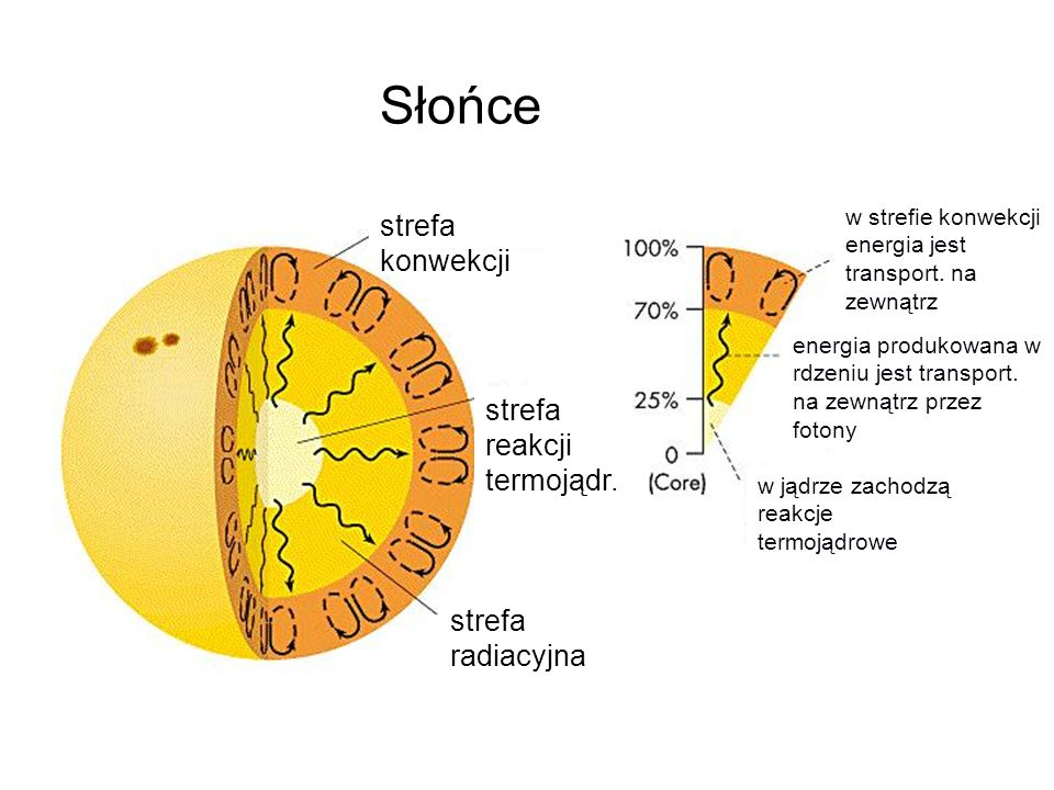 Słońce strefa konwekcji strefa reakcji termojądr. strefa radiacyjna