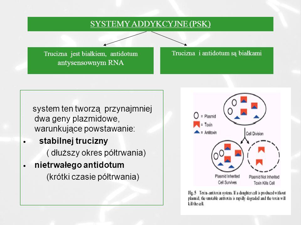 SYSTEMY ADDYKCYJNE (PSK)