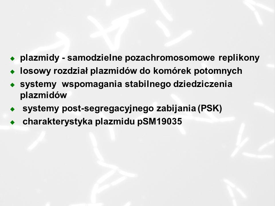 plazmidy - samodzielne pozachromosomowe replikony