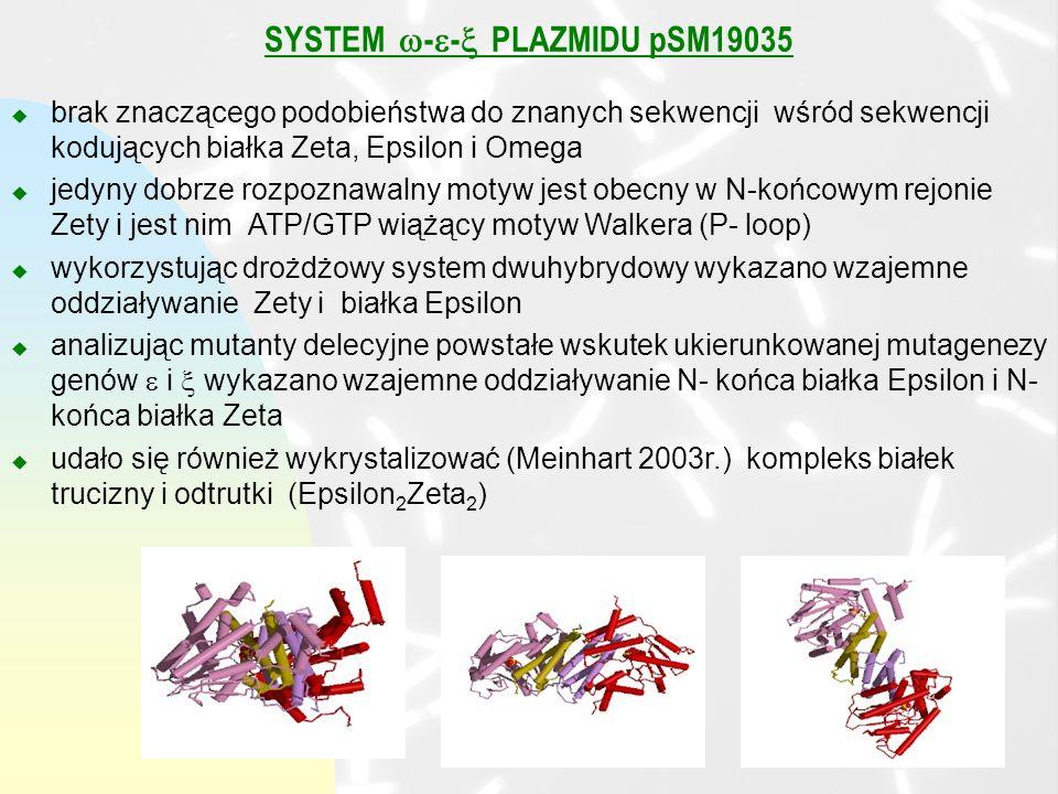 SYSTEM -- PLAZMIDU pSM19035