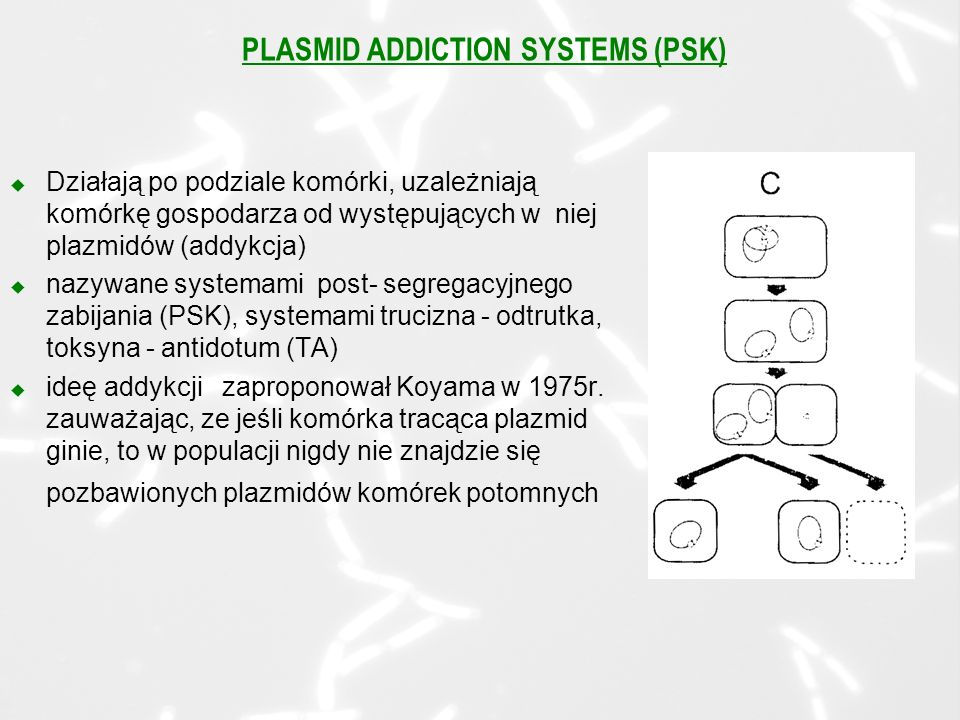 PLASMID ADDICTION SYSTEMS (PSK)