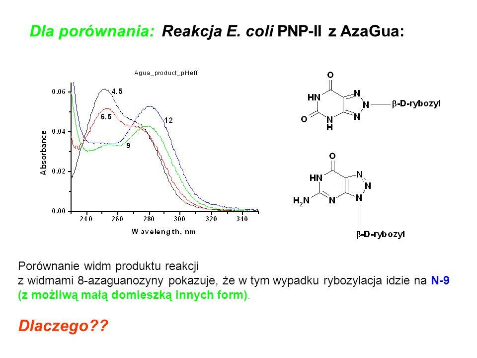 Dla porównania: Reakcja E. coli PNP-II z AzaGua: