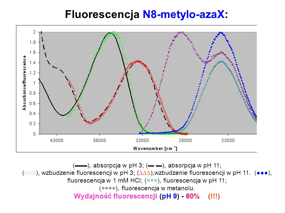 Fluorescencja N8-metylo-azaX: