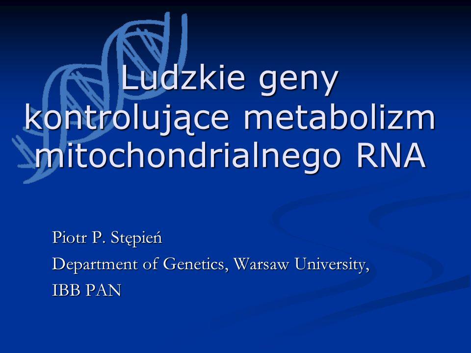 Ludzkie geny kontrolujące metabolizm mitochondrialnego RNA