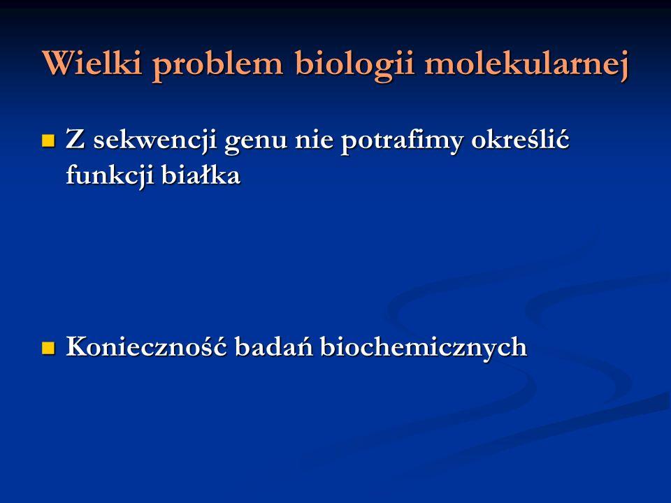 Wielki problem biologii molekularnej