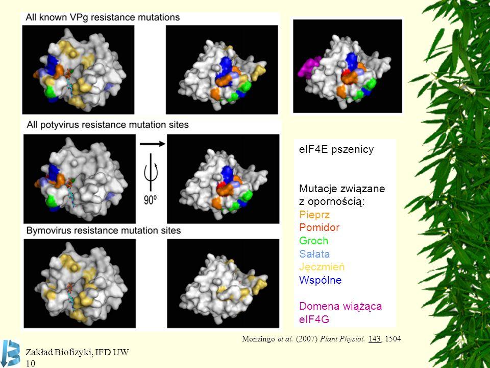 Monzingo et al. (2007) Plant Physiol. 143, 1504