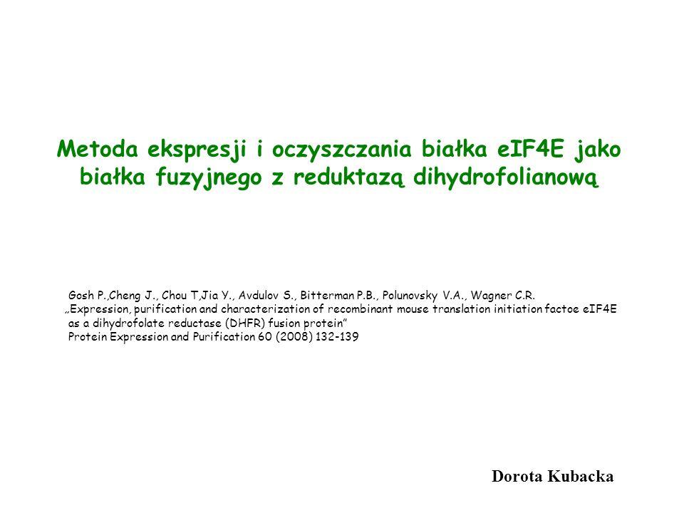 Metoda ekspresji i oczyszczania białka eIF4E jako