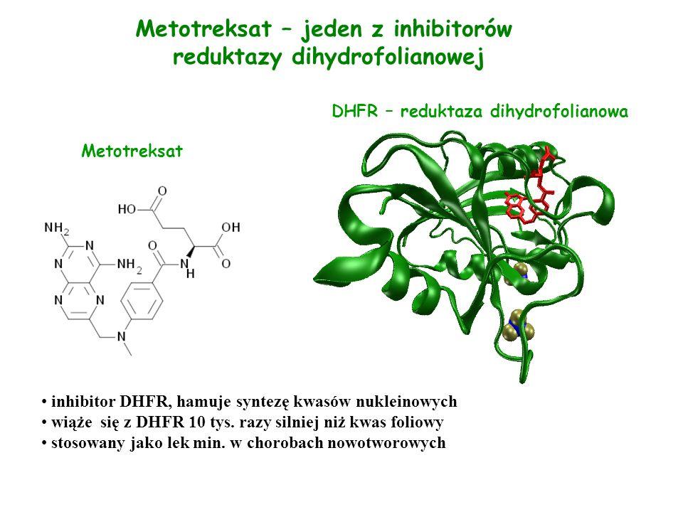 Metotreksat – jeden z inhibitorów reduktazy dihydrofolianowej