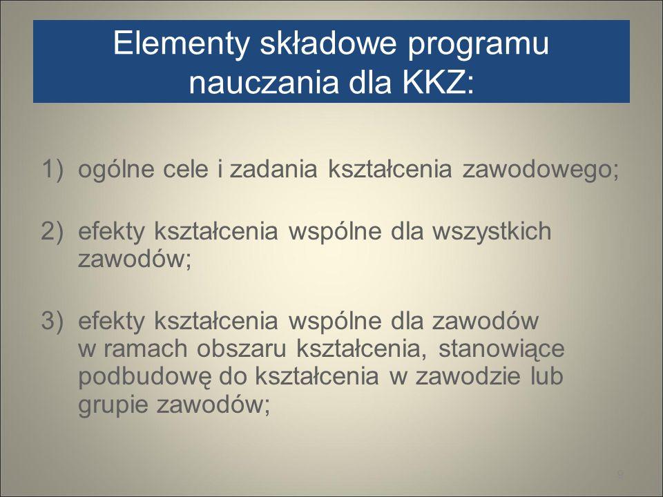 Elementy składowe programu nauczania dla KKZ: