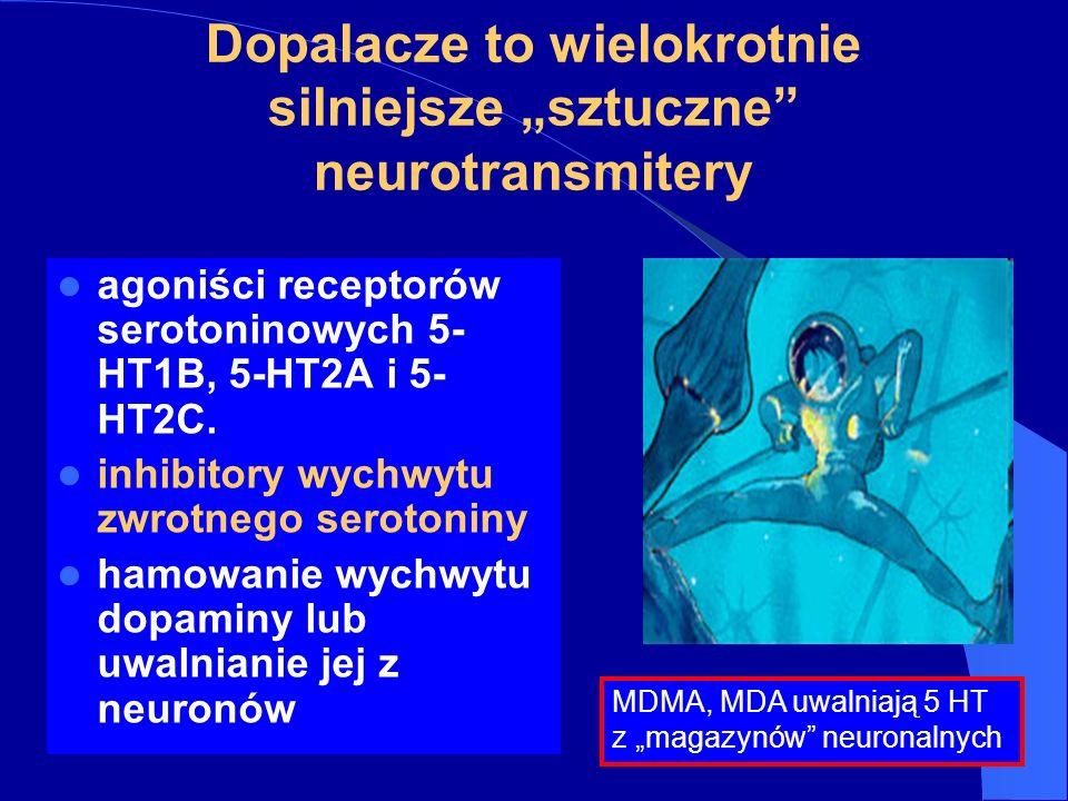 """Dopalacze to wielokrotnie silniejsze """"sztuczne neurotransmitery"""