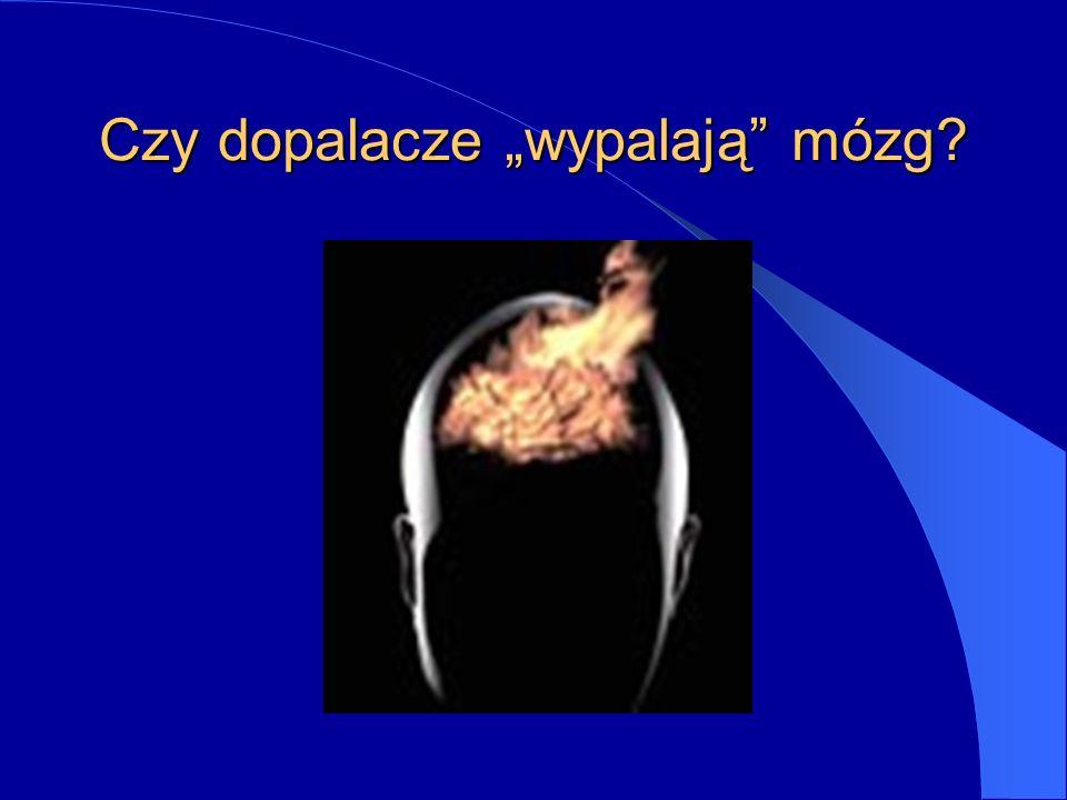 """Czy dopalacze """"wypalają mózg"""
