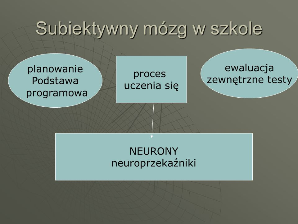 Subiektywny mózg w szkole