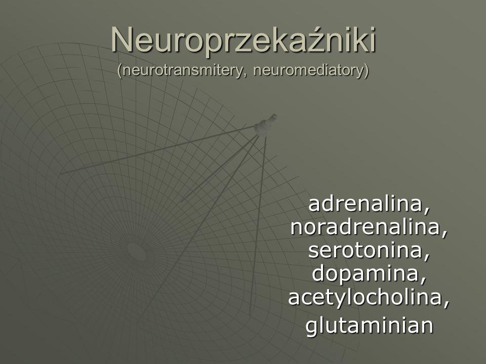 Neuroprzekaźniki (neurotransmitery, neuromediatory)