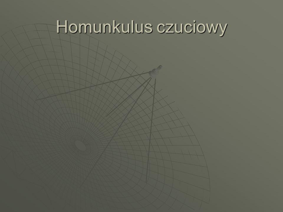 Homunkulus czuciowy