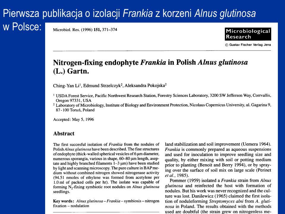 Pierwsza publikacja o izolacji Frankia z korzeni Alnus glutinosa w Polsce: