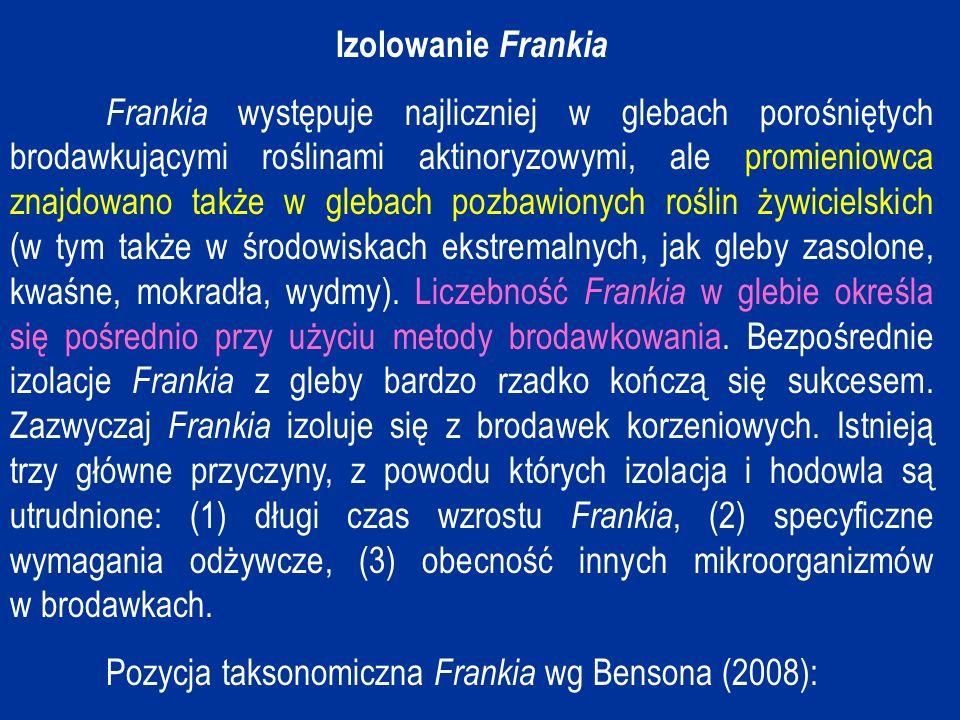 Izolowanie Frankia
