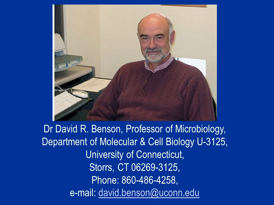 Dr David R.