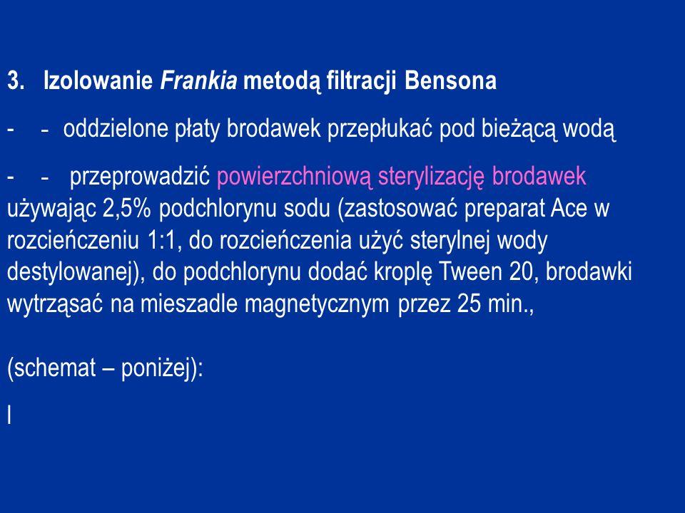 3. Izolowanie Frankia metodą filtracji Bensona