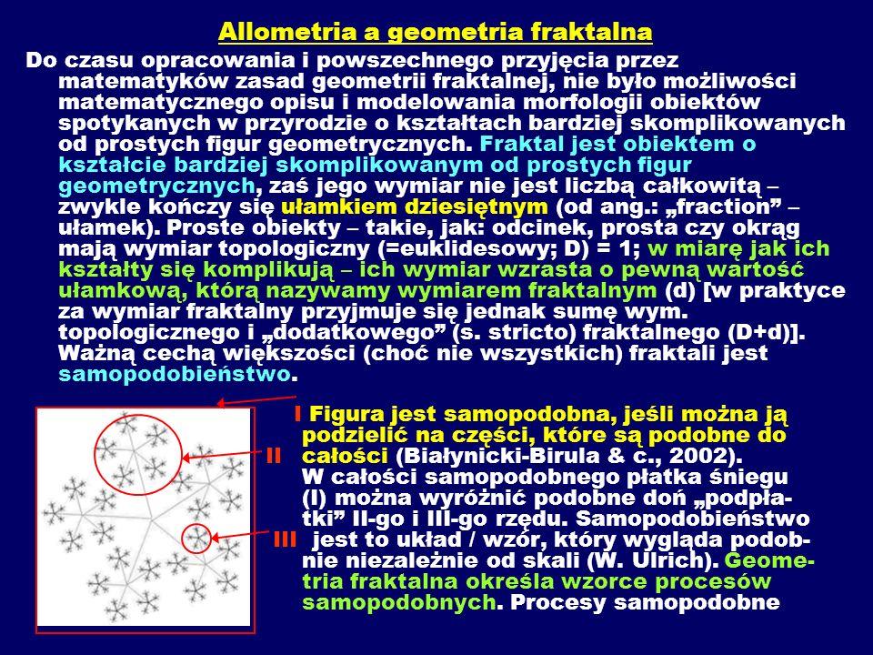 Allometria a geometria fraktalna