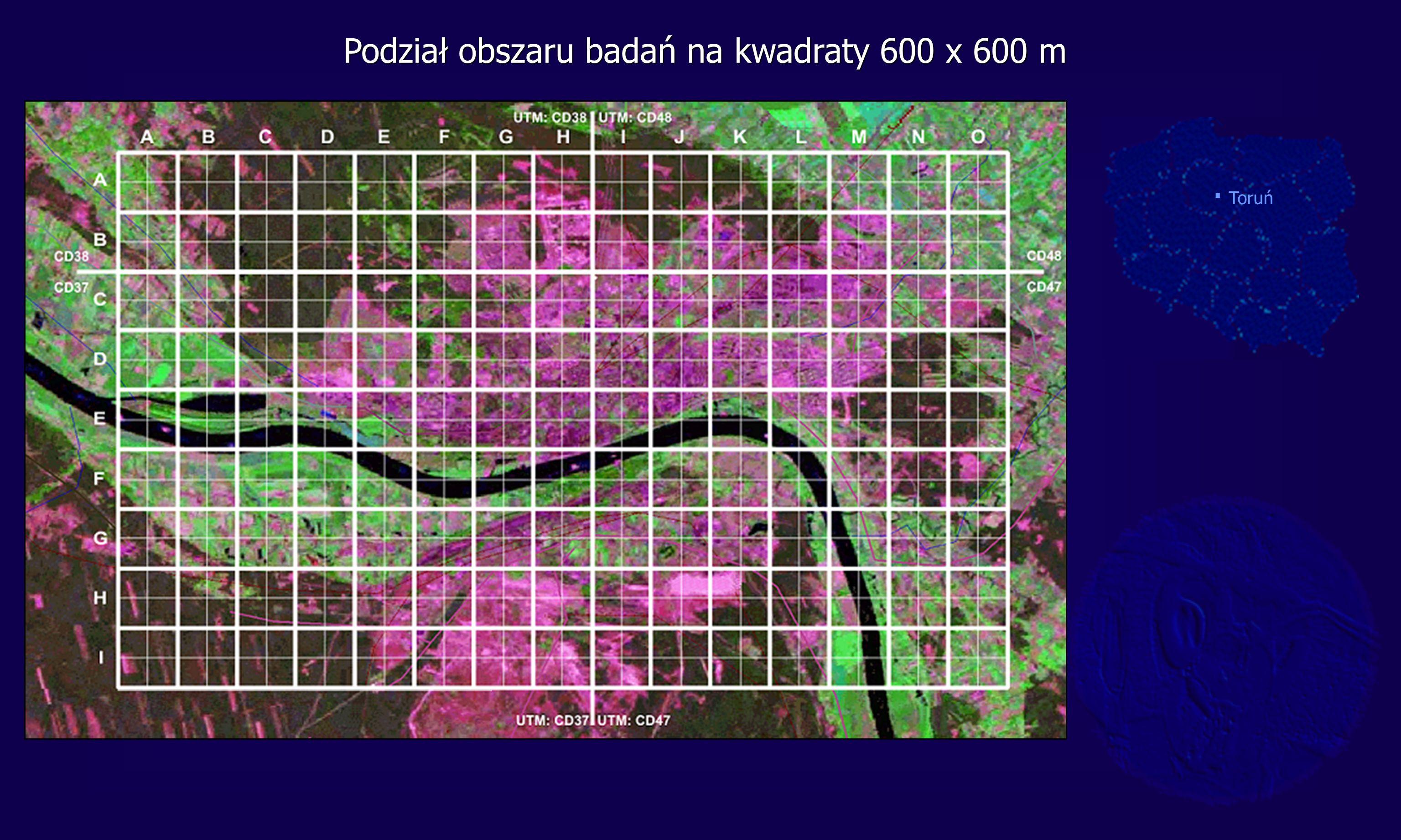 Podział obszaru badań na kwadraty 600 x 600 m