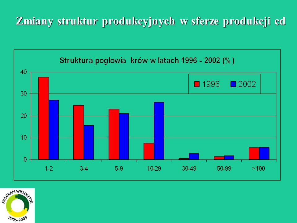 Zmiany struktur produkcyjnych w sferze produkcji cd