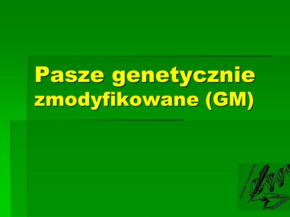 Pasze genetycznie zmodyfikowane (GM)