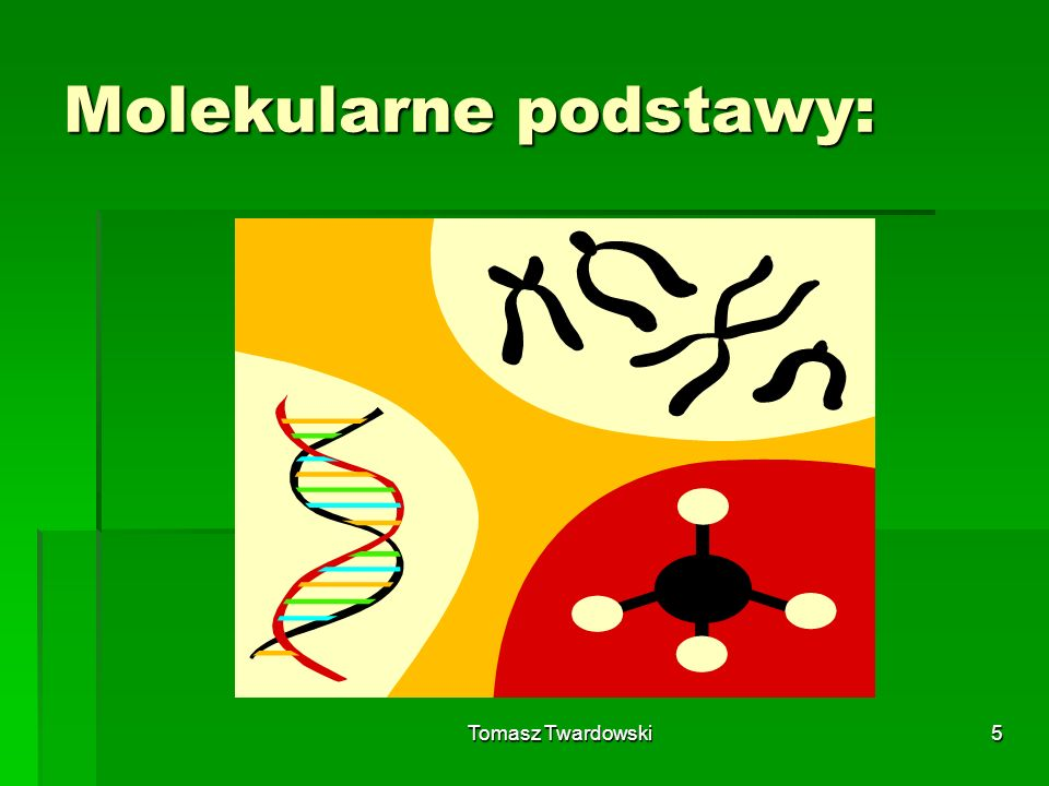 Molekularne podstawy: