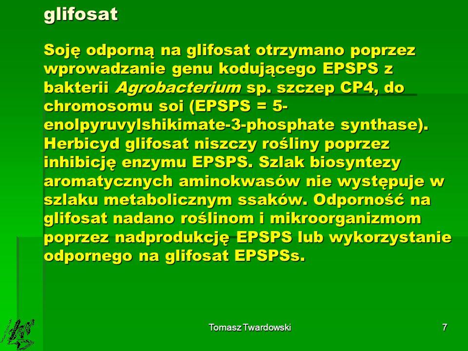 glifosat Soję odporną na glifosat otrzymano poprzez wprowadzanie genu kodującego EPSPS z bakterii Agrobacterium sp. szczep CP4, do chromosomu soi (EPSPS = 5-enolpyruvylshikimate-3-phosphate synthase). Herbicyd glifosat niszczy rośliny poprzez inhibicję enzymu EPSPS. Szlak biosyntezy aromatycznych aminokwasów nie występuje w szlaku metabolicznym ssaków. Odporność na glifosat nadano roślinom i mikroorganizmom poprzez nadprodukcję EPSPS lub wykorzystanie odpornego na glifosat EPSPSs.