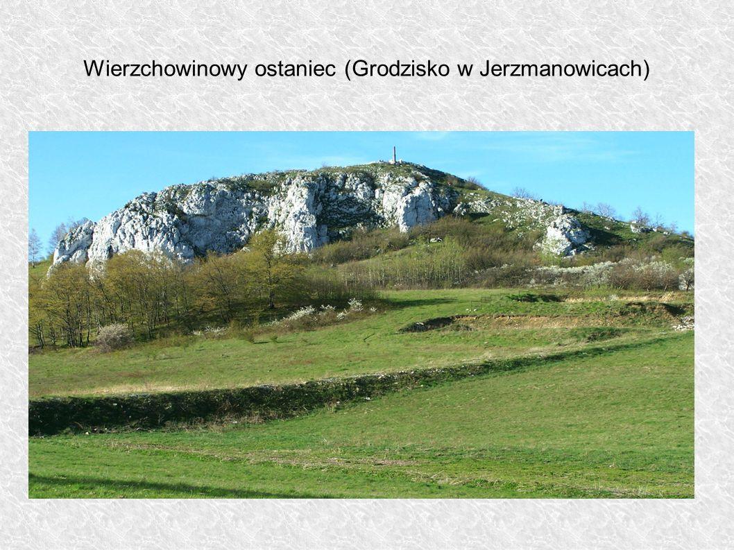 Wierzchowinowy ostaniec (Grodzisko w Jerzmanowicach)