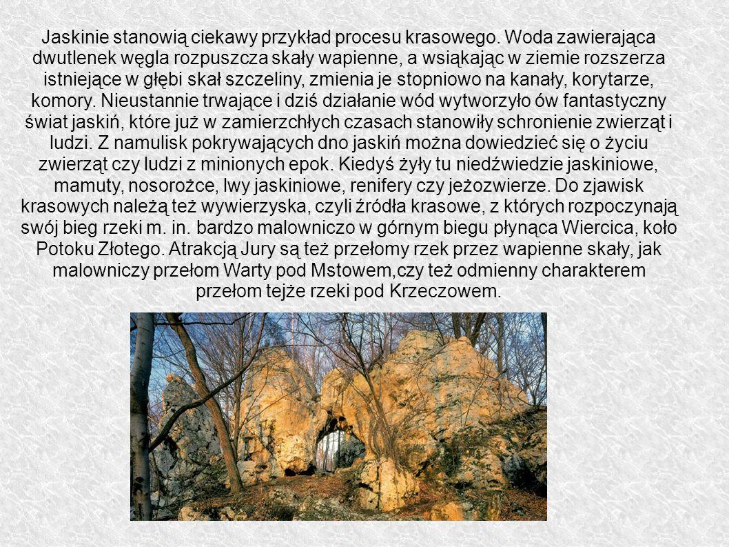 Jaskinie stanowią ciekawy przykład procesu krasowego