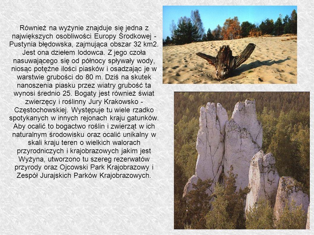 Również na wyżynie znajduje się jedna z największych osobliwości Europy Środkowej - Pustynia błędowska, zajmująca obszar 32 km2.