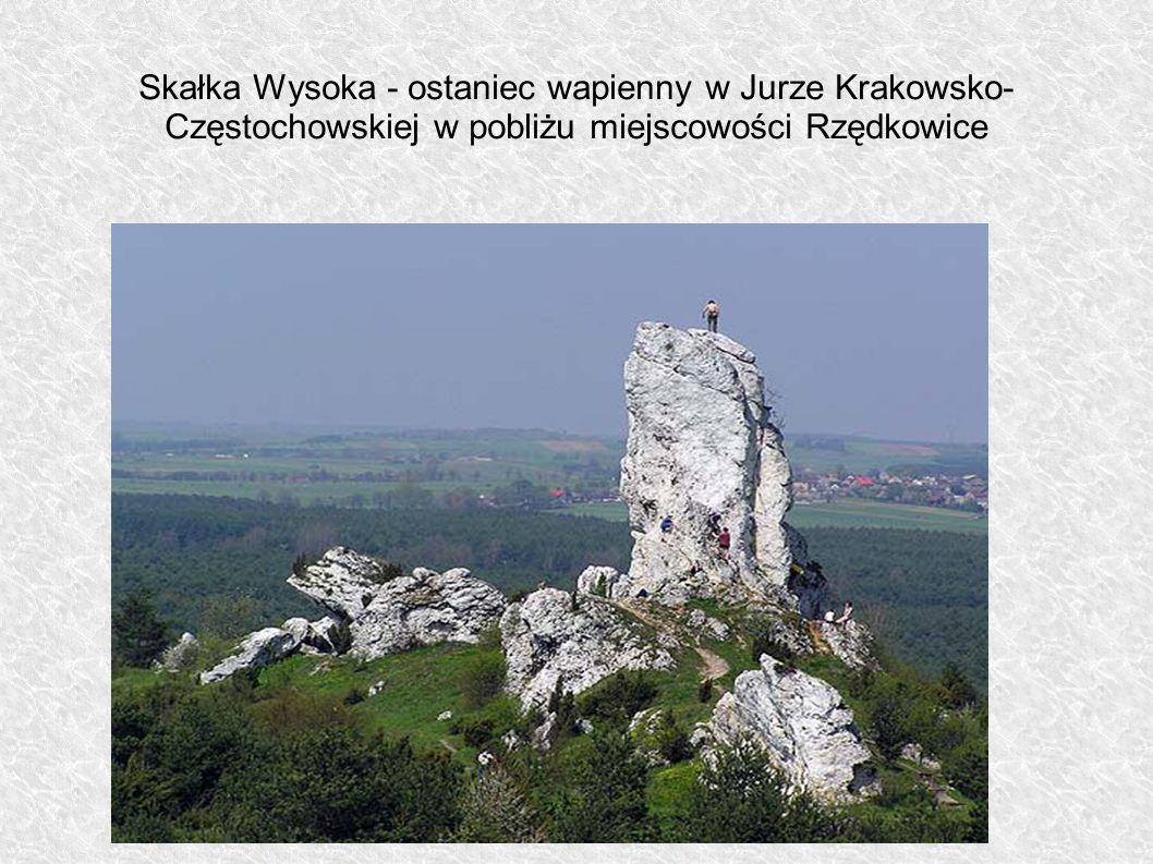 Skałka Wysoka - ostaniec wapienny w Jurze Krakowsko-Częstochowskiej w pobliżu miejscowości Rzędkowice