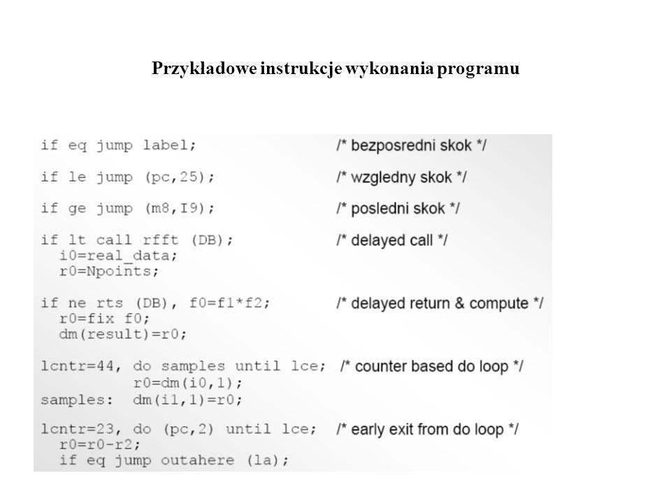 Przykładowe instrukcje wykonania programu