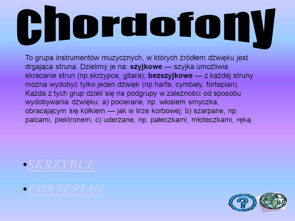 chordofony SKRZYBCE FORTEPIAN