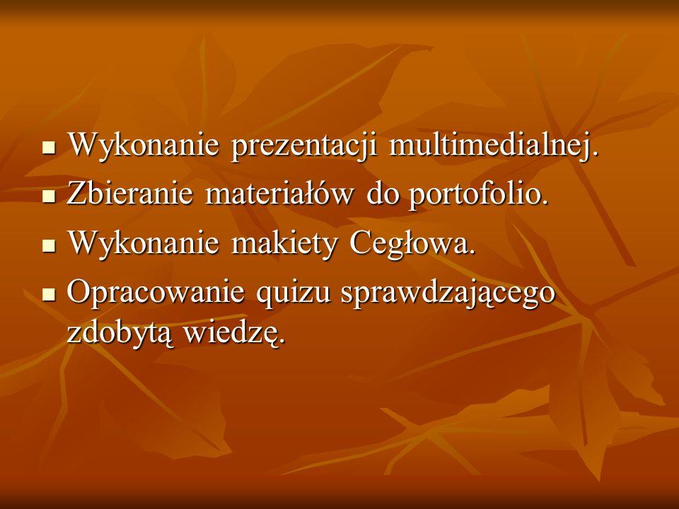 Wykonanie prezentacji multimedialnej.