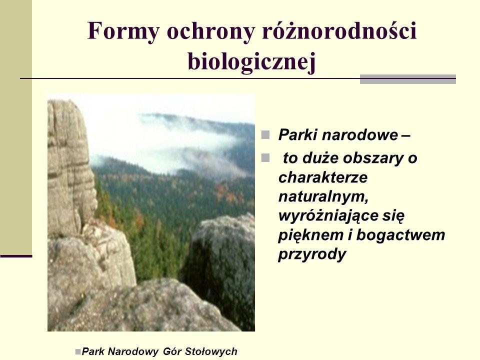 Formy ochrony różnorodności biologicznej