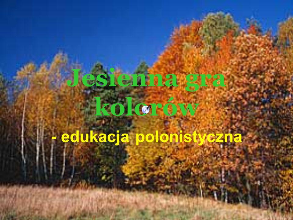 - edukacja polonistyczna