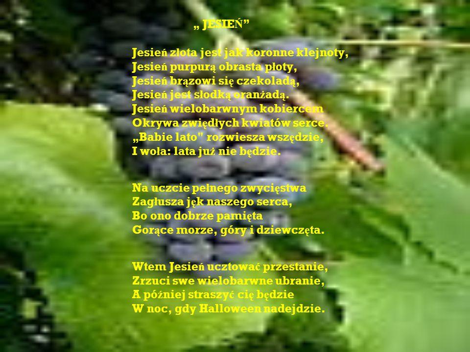 Jesień złota jest jak koronne klejnoty, Jesień purpurą obrasta płoty,