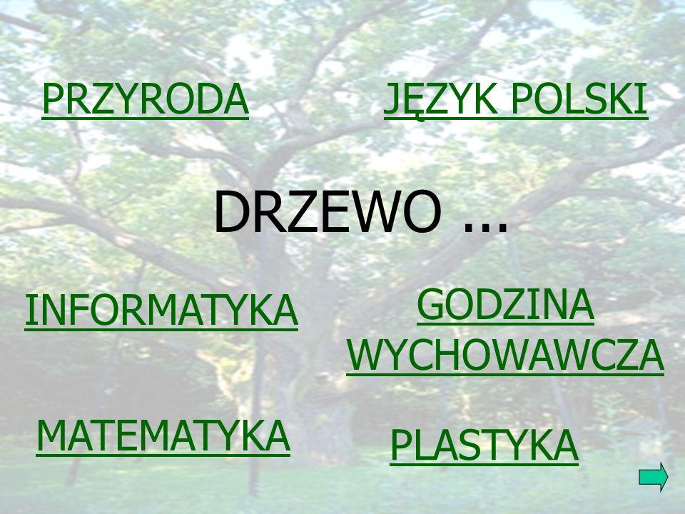 DRZEWO ... PRZYRODA JĘZYK POLSKI GODZINA WYCHOWAWCZA INFORMATYKA