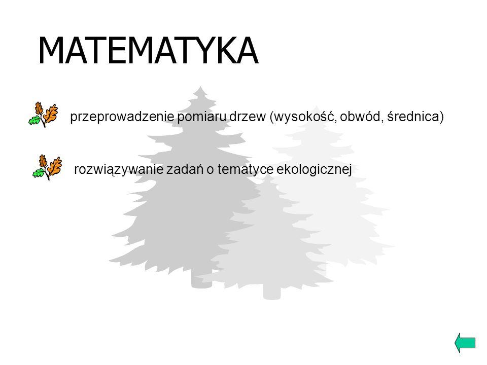 MATEMATYKA przeprowadzenie pomiaru drzew (wysokość, obwód, średnica)