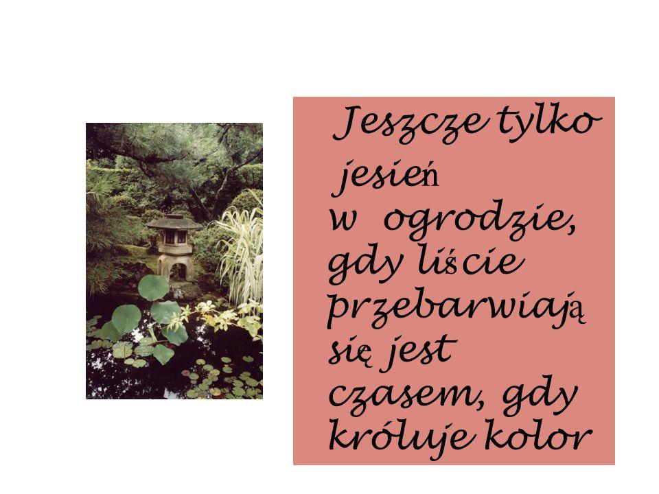 Jeszcze tylkojesień w ogrodzie, gdy liście przebarwiają się jest czasem, gdy króluje kolor.