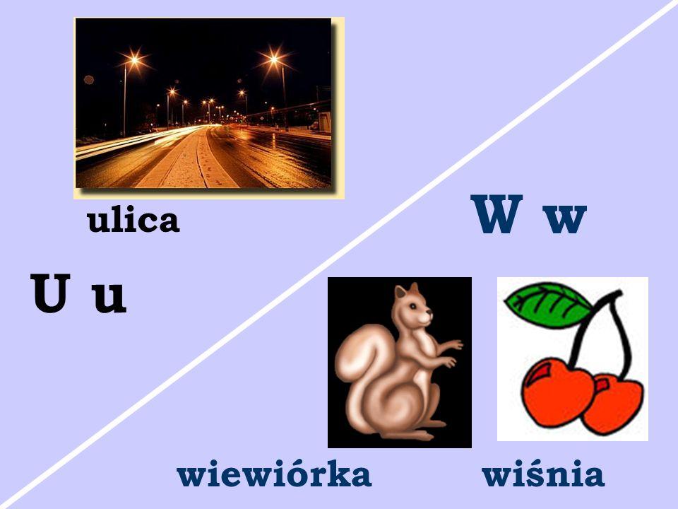 W w ulica U u wiewiórka wiśnia