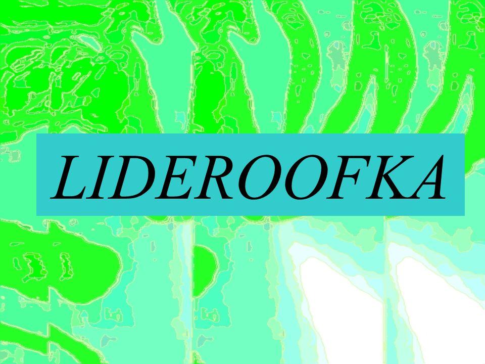 LIDEROOFKA
